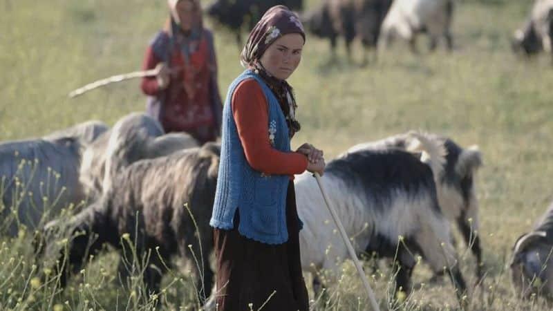 Anatolian Nomads Nazmiyal